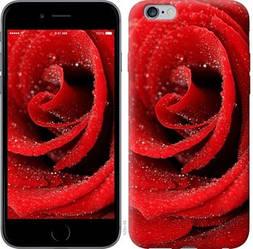 "Чехол на iPhone 6s Plus Красная роза ""529c-91-328"""