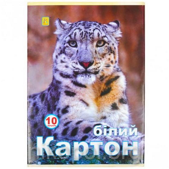 """Белый картон для аппликаций 10 листов А4 """"Коленкор"""" """"Аляска"""" №2"""