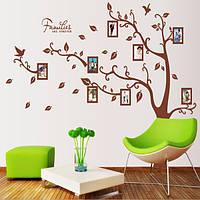 Самоклеющаяся наклейка на стену - Дерево с фоторамками (216х160см)
