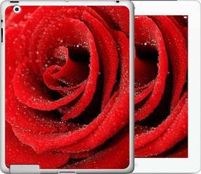 """Чехол на iPad 2/3/4 Красная роза """"529c-25-328"""""""