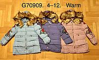Куртка для девочек на меху оптом, Grace, 4-12 лет., арт.G70909, фото 1
