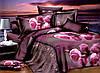 Двуспальный комплект постельного белья евро 200*220 хлопок  (10358) TM KRISPOL Украина