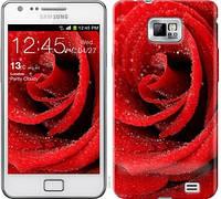 "Чехол на Samsung Galaxy S2 i9100 Красная роза ""529c-14-328"""