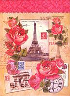 "Блокнот А5 твёрдая обложка, 80 л. ""Париж"""