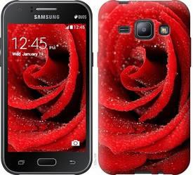 "Чехол на Samsung Galaxy J1 J100H Красная роза ""529c-104-328"""