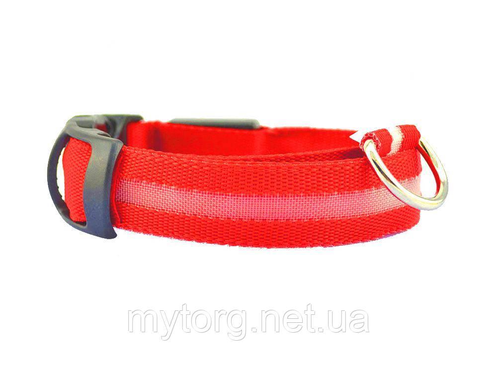 Товар имеет дефект Светящийся ошейник для собак Уценка №460 Уценка! 1.5 см, длина: 30-36 см, диапазон регулировки: 6см (размер XS) Красный