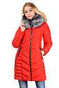 Зимняя женская куртка Ника Водоотталкивающая плащевка Canada Размеры 42-48, фото 6