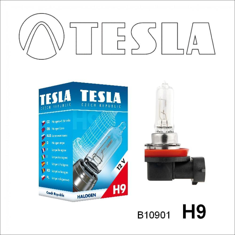 Лампа галогенная Tesla H9 (PGJ19-5) 12V, 65W B10901