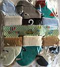 Носки для новорождённых тёплые мальчикам тм Шугуан, фото 2