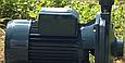 Насос Pedrollo CP 200, фото 3