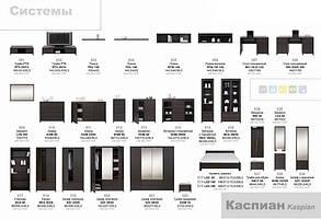 Стол письменный_BIU 2D2S Каспиан Венге (БРВ-Украина ТМ), фото 2