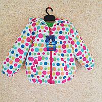 Куртка-ветровка осенняя для девочки