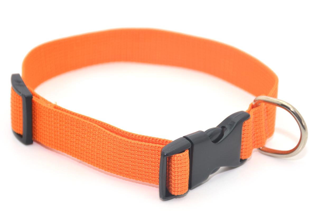 Ошейник для собак капроновый 2,5 оранжевый