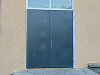 Входные двери (2 ств) Д-311
