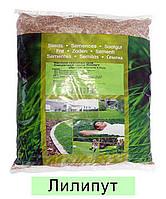 Газонна трава EuroGrass Liliput - 1 кг (ліліпут)