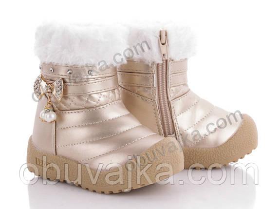 Зимняя обувь оптом Зимние ботинки 2019 для детей от фирмы BBT(20-25), фото 2