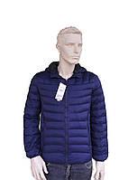 Мужская куртка демисезонная ( еврозима) с капюшоном  Фабричный Китай