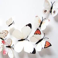 Объемные 3D бабочки на стену (обои) для декора (белые цветные) Код:312602156