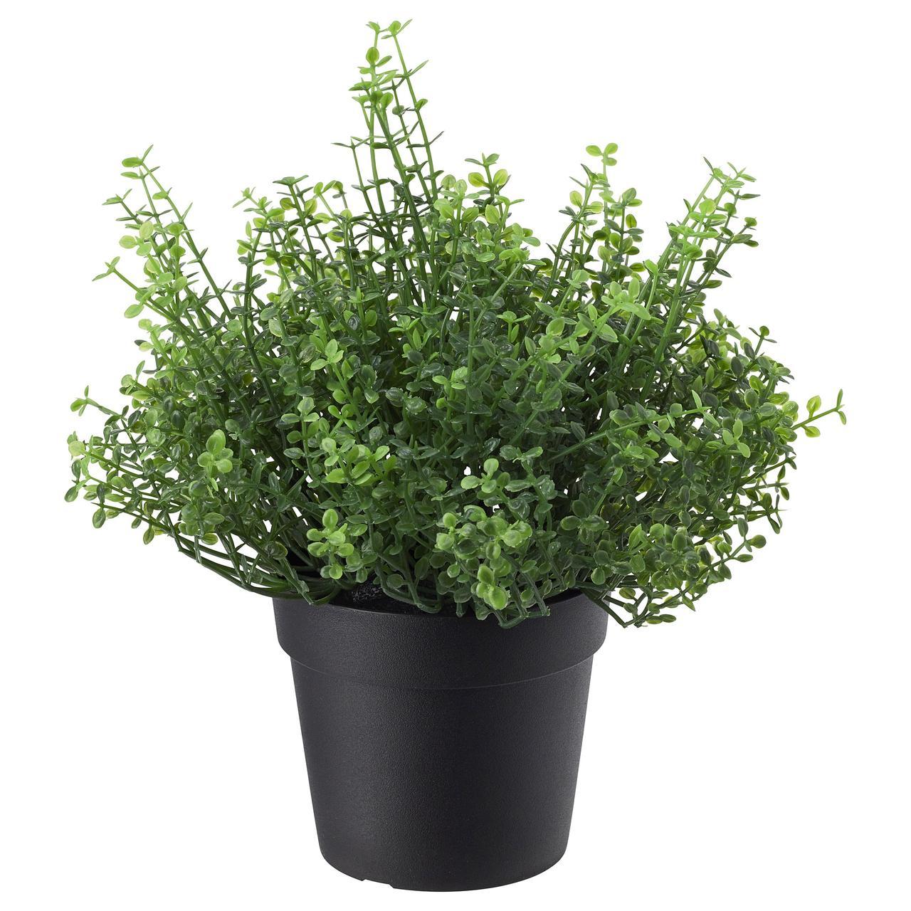 Искусственное растение в горшке IKEA FEJKA 9 см 903.953.37
