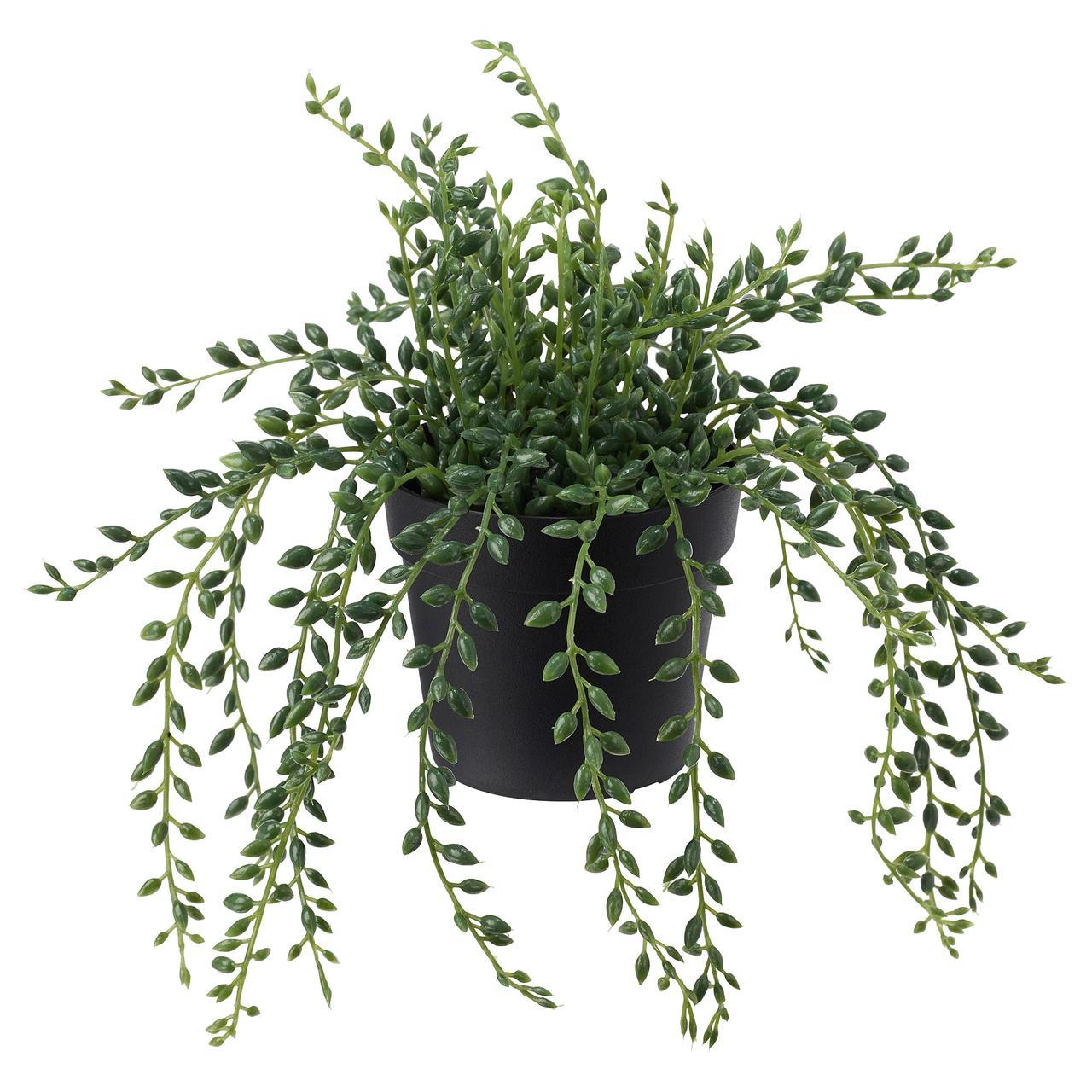 Искусственное растение в горшке IKEA FEJKA 9 см Sznur korali 303.953.40