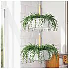 Искусственное растение в горшке IKEA FEJKA 9 см Sznur korali 303.953.40, фото 3