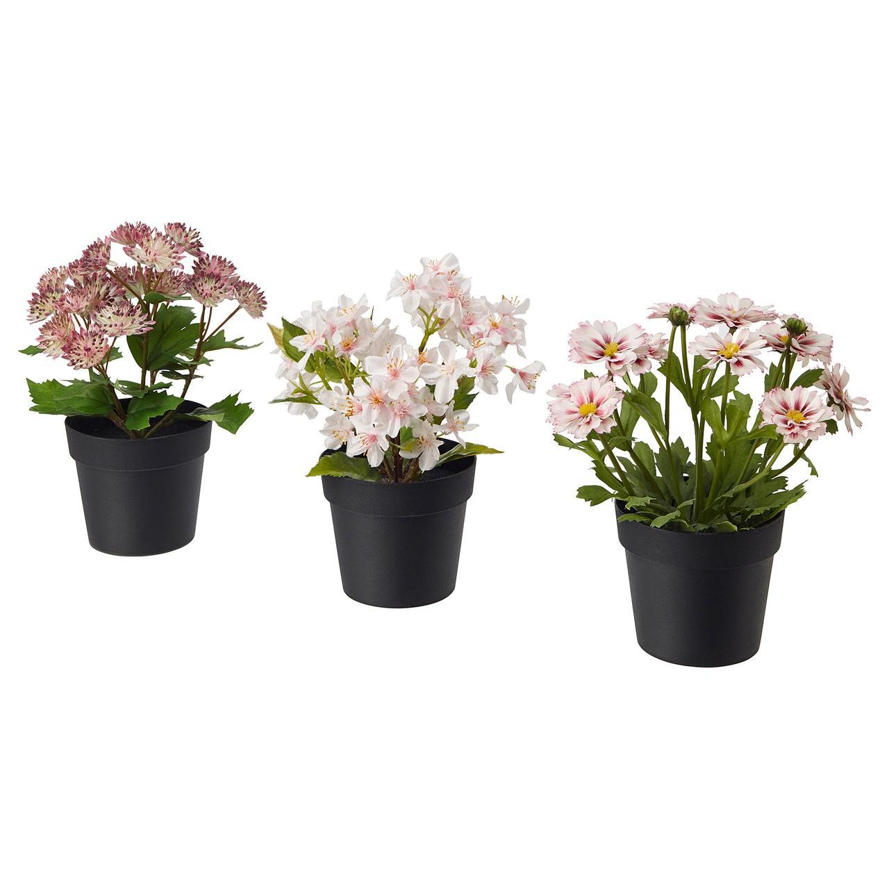 Искусственное растение в горшке IKEA FEJKA 9 см 3 шт розовые 703.953.19