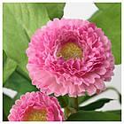 Искусственное растение в горшке IKEA FEJKA 12 см розовая ромашка 103.953.36, фото 3