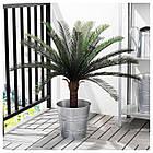 Искусственное растение в горшке IKEA FEJKA 19 см пальма саго 304.103.12, фото 3