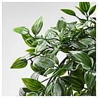 Искусственное растение в горшке IKEA FEJKA 9 см 403.495.31, фото 2