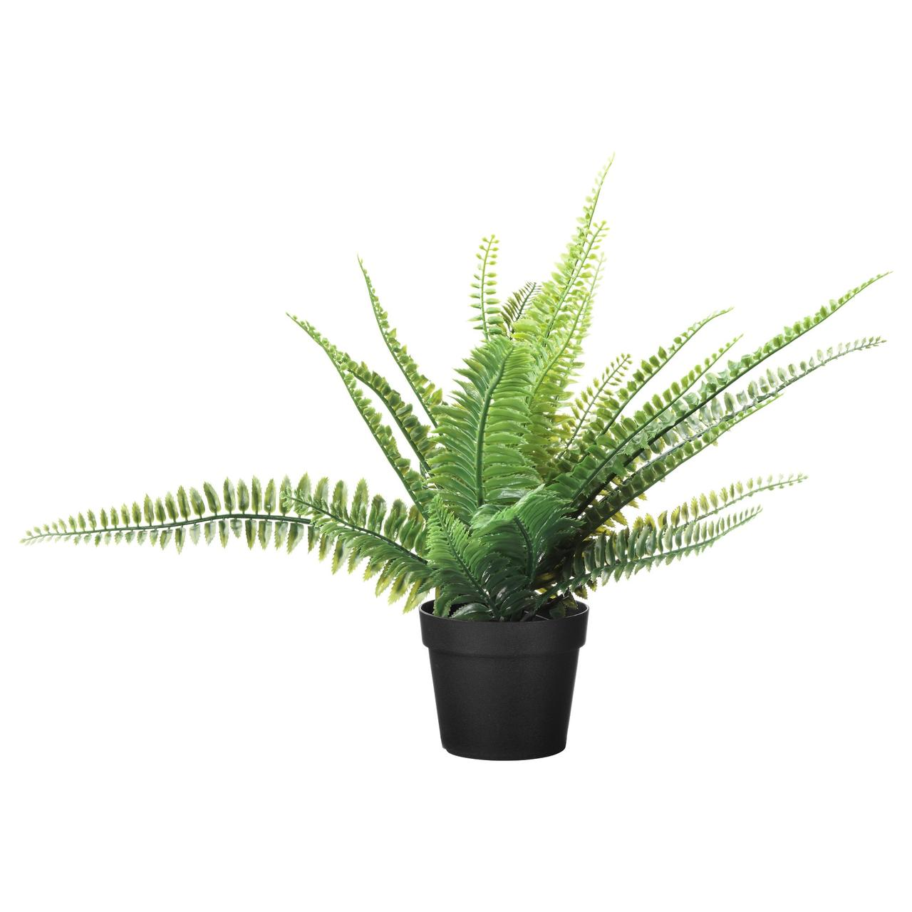Искусственное растение в горшке IKEA FEJKA 10 см папоротник 003.495.33