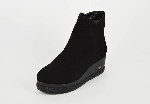 Классические замшевые ботинки на танкетке Guero 8558, фото 2