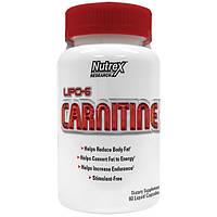 Lipo 6 карнитин Nutrex (60 кап.)