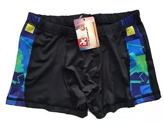 Плавки мужские купальные Radical Reef (original), трусы-боксеры для бассейна, пляжа