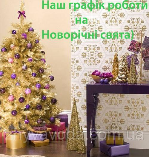 Наш графік роботи на Новорічні свята