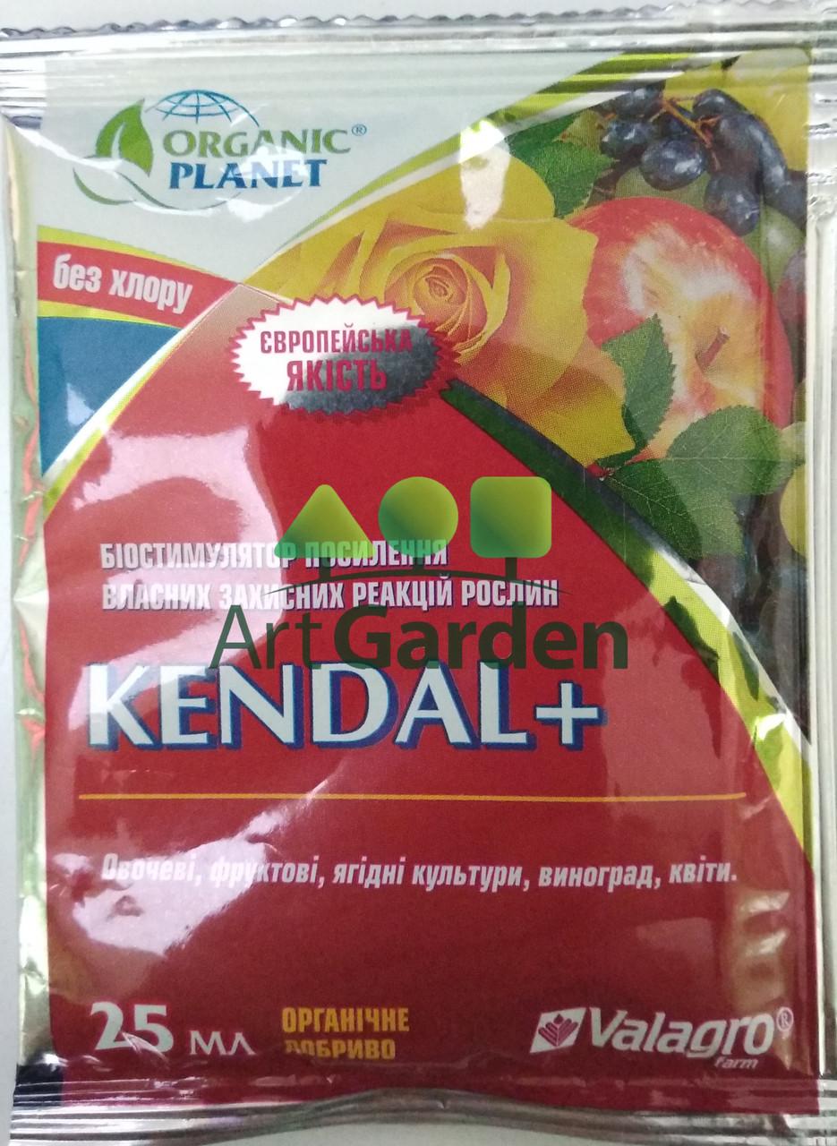 Кендал+ 25 мл