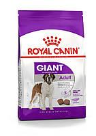 Royal Canin (Роял Канин) Giant Adult корм для собак гигантских пород старше 18 месяцев, 4 кг
