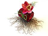 Набор из махровых полотенец Орхидея, фото 2