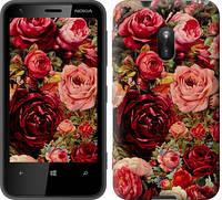 """Чехол на Nokia Lumia 620 Цветущие розы """"2701u-249-12665"""""""