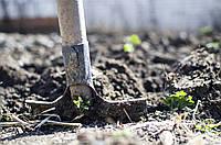 Как подготовить дачный участок к зиме? | Часть 1 - Навоз и компост.