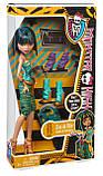 Кукла Monster High Клео де Нил я люблю обувь - Cleo De Nile Doll & Shoe Collection, фото 3