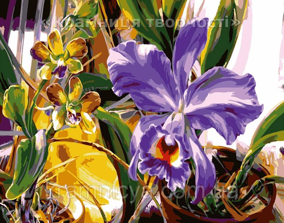 """Картина по номерам """"Весенний Ирис"""", VD064, 30х40см."""