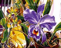 """Картина по номерам """"Весенний Ирис"""", VD064, 30х40см., фото 1"""