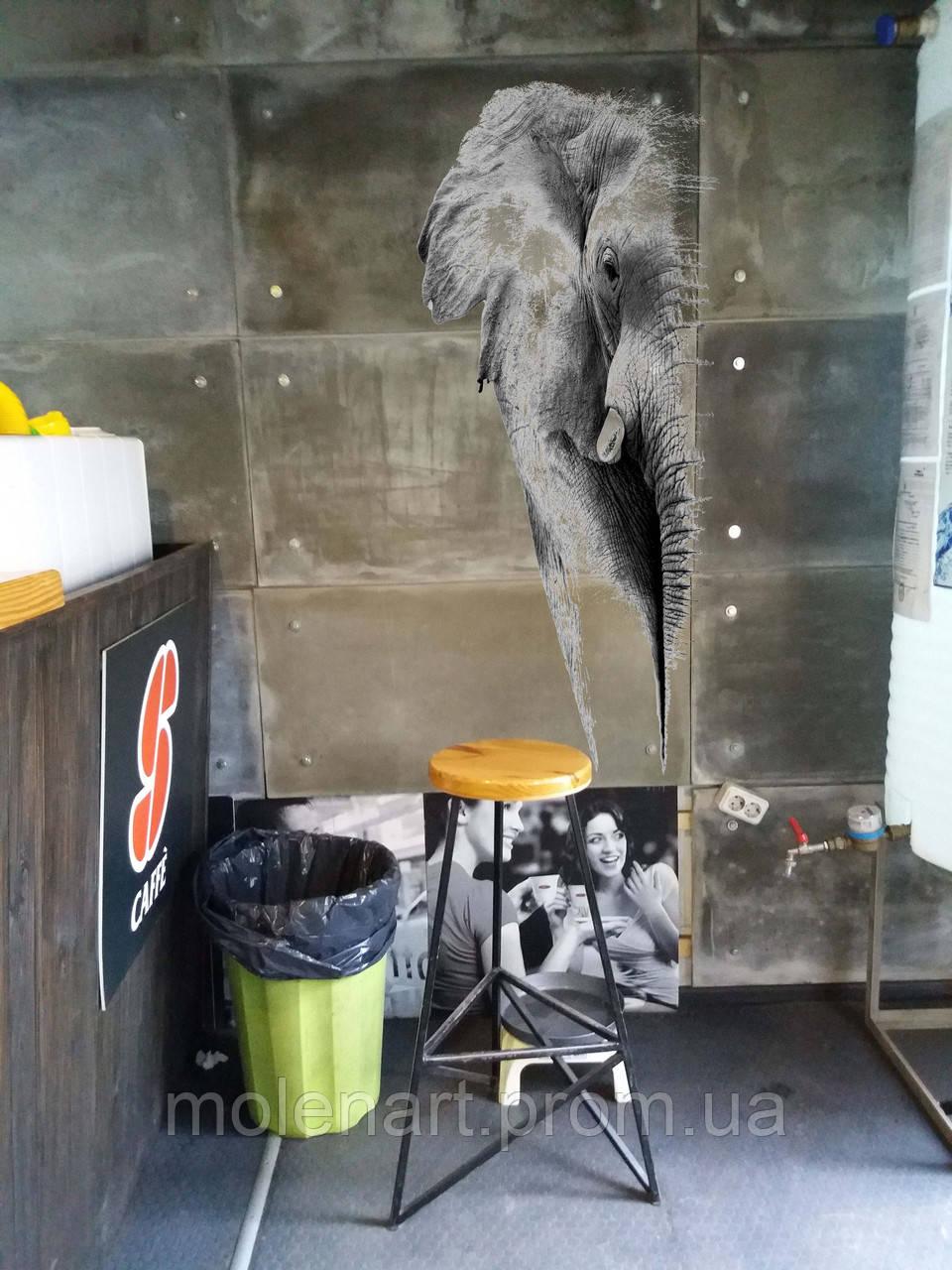 Прозрачные фотообои для бетона Слон