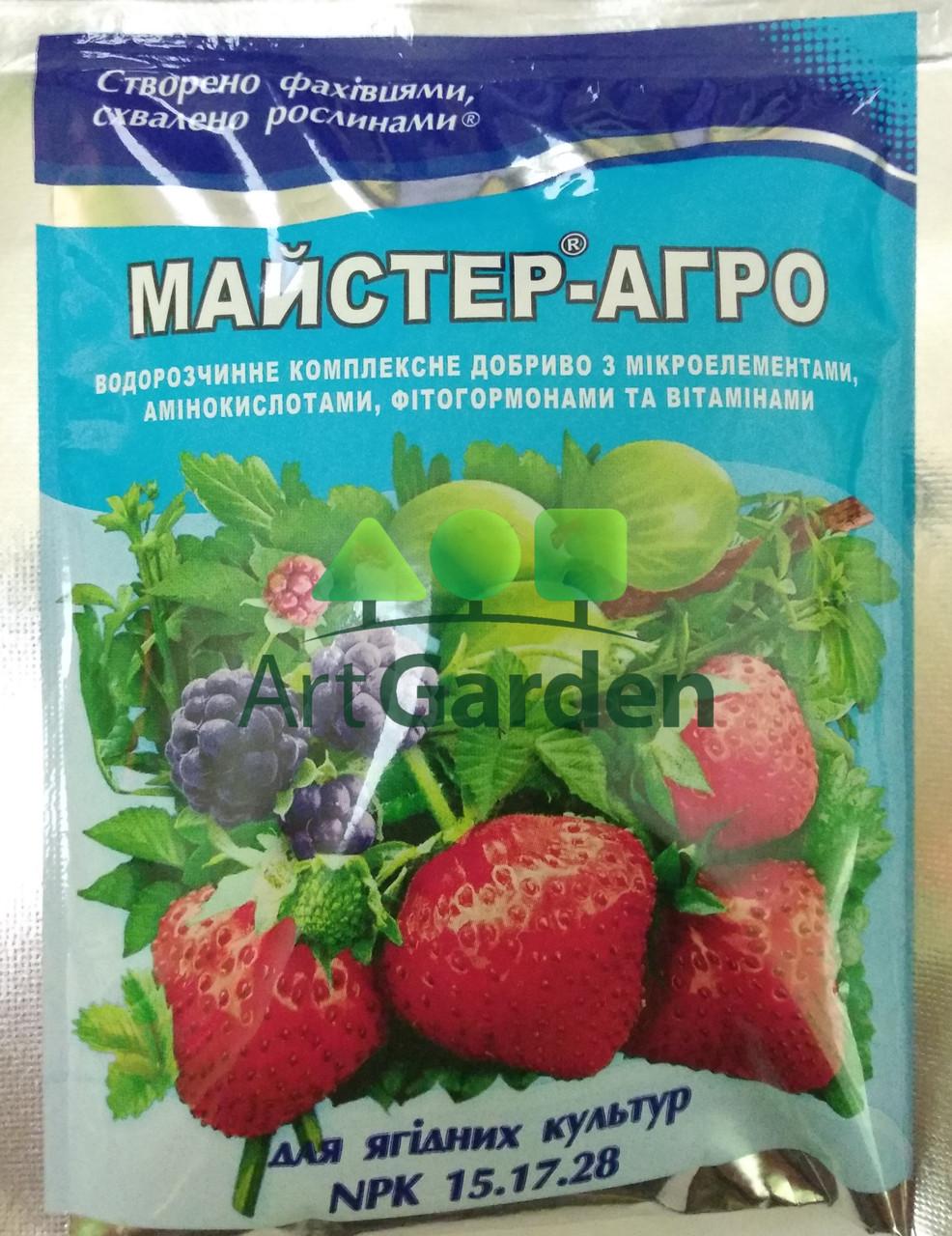 Майстер-Агро для ягідних культур (NPK 15.17.28) 100 г