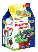 Увлекательная ботаника Базилик