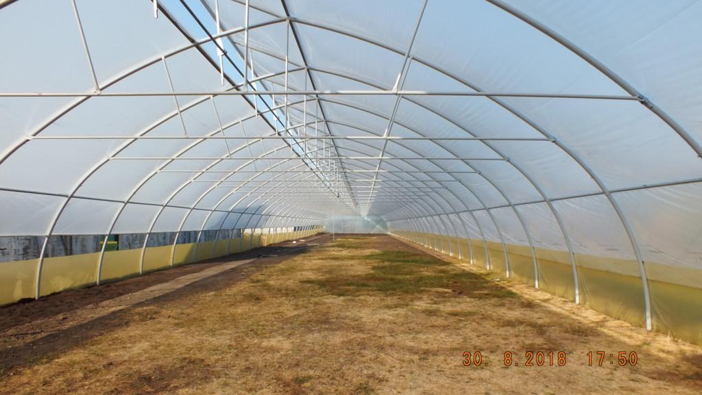 Фермерская теплица с боковым и верхним проветриванием изнутри