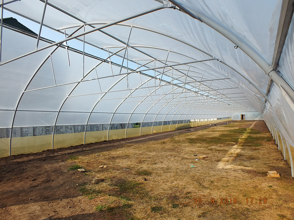 Фермерская промышленная теплица с верхним проветриванием
