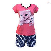 Женская пижама шорты и футболка с котиком 52-54 р. кулир, фото 1