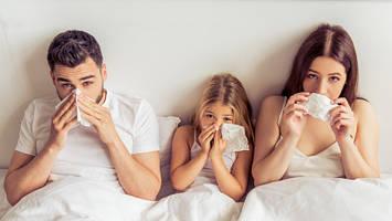 5 советов для борьбы с синуситом. Заботимся о здоровье носовых пазух