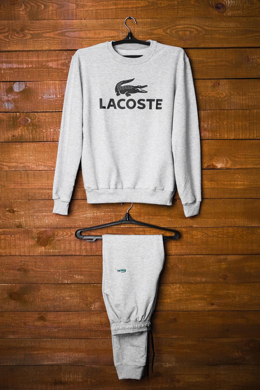 Мужской спортивный костюм Lacoste Серый 19016e2bf4dd5